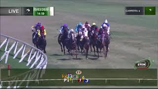 Vidéo de la course PMU PREMIO FEUDALERO