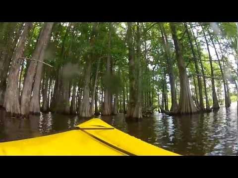 Kayaking on Lake Marion