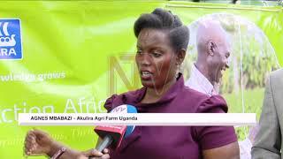 OKUTUMBULA EBY'OBULIMI: Waliwo kkampuni ewadde gav't ebijimusa