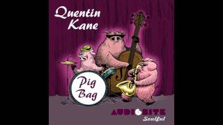 Quentin Kane - Pig Bag (Roy Misher Remix)