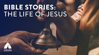 Bible Stories: The Life of Jesus