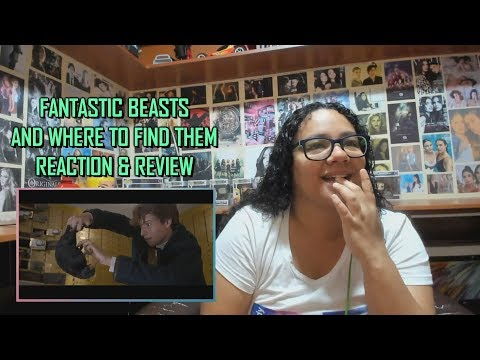 Fantastic Beasts And Where To Find Them MOVIE REACTION & REVIEW   JuliDG