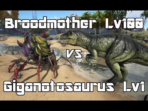 Ark survival evolved broodmother lyrix lvl100 vs giganotosaurus ark survival evolved broodmother lyrix lvl100 vs giganotosaurus lvl1 dino battle malvernweather