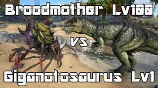 Ark survival evolved armor t rex vs skeletal t rex dino battle ark survival evolved broodmother lyrix lvl100 vs giganotosaurus lvl1 dino battle malvernweather Image collections