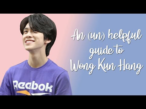 An (un)helpful Guide To Wong Kun Hang (Hendery)