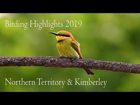 Birding Journeys Northern Territory & The Kimberley Regions Of Australia