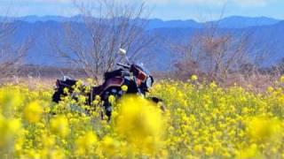 2月中旬~4月14日までに撮影した春風景をクリップにしました。 It is us...