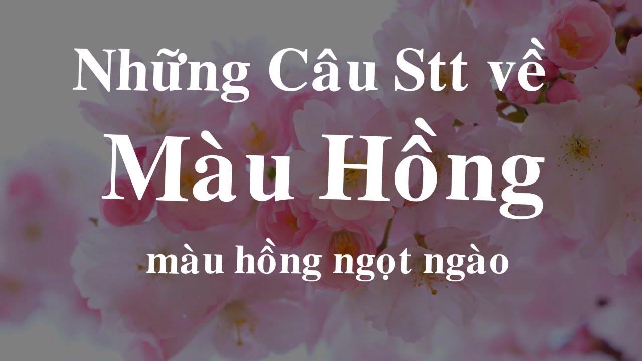 Những Câu STT Hay về Màu Hồng Ngọt Ngào Cuộc Sống | Phúc Nguyễn Channel