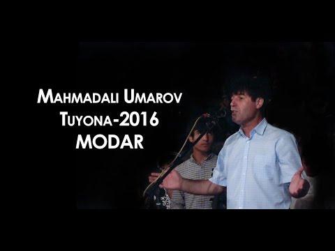 Махмадали Умаров туйёна 2016 \