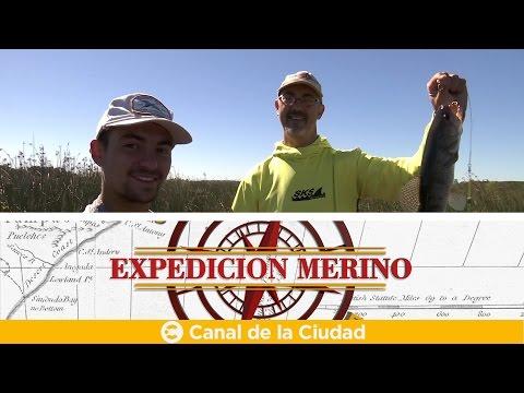 """<h3 class=""""list-group-item-title"""">Conocemos la historia y sus tradiciones de San Miguel del Monte y mucho más en Expedición Merino</h3>"""