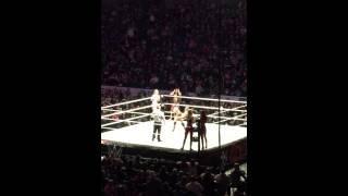 WWE Divas Buffalo NY 2015