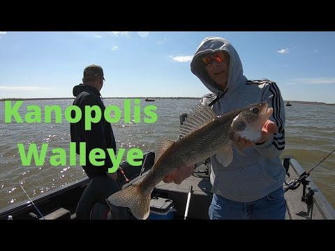 Kanopolis Post Spawn Walleye On The Flats Kansas Fishing