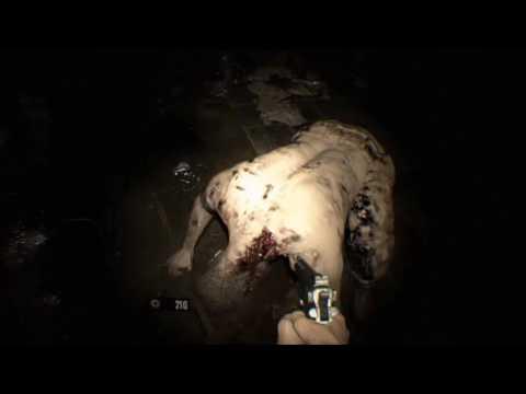 Resident Evil 7 Resident Evil 7 Nightmare Dlc Night Terror