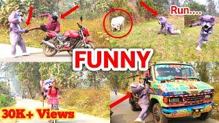 Teddy Bear Bakchodi and Dance✌️| Irritating People and Cow 🐄 | India 🇮🇳| Kolkata| Crazy Teddy 🔥