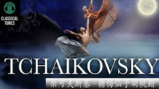 """柴可夫斯基 - 糖梅仙子胡桃鉗 Tchaikovsky """"Dance Of The Sugar Plum Fairy"""""""