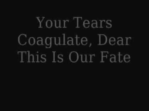 Hallelujah--Fit For Rivals Lyrics