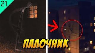 Дело #21: Палочник - жуткое существо из потерянного видео (описание, история)
