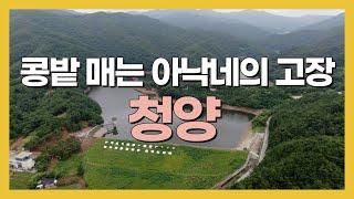 South Korea, cheongyang Travel…