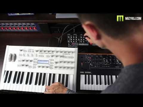 Roland SE- 02 VS Korg Monologue