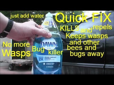 how to keep bees away