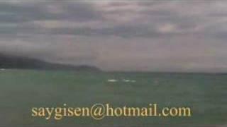 ayancık sahil ( canlı görüntüler ) 12