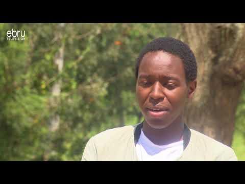How I Got A Full Scholarship To Harvard University: Brian Nzuki