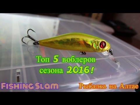 Топ 5 воблеров на щуку и окуня сезона 2016!. Рыбалка на Алтае ...