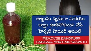 జుట్టుని నల్లగా దృఢంగా ఉంచె హెయిర్ ఆయిల్    Hair Oil for Strong and Healthy hair