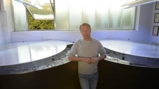 Modern Koi Blog #149 - Wie schnell sterben Biofilter?