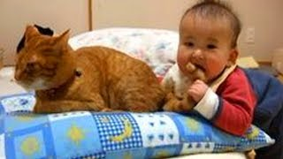 Babies Will Eat Anything! | Hilarious Babies Compilation