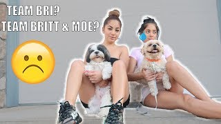 THE BIGGEST CUSTODY BATTLE! WHO WILL KEEP THE DOGS!?