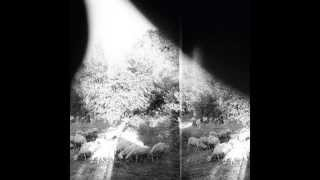 Godspeed You! Black Emperor - Peasantry Or 'Light! Inside Of Light!'