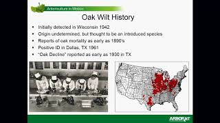 Oak Wilt and How to Manage It - Roots to Shoots 2018 mp3