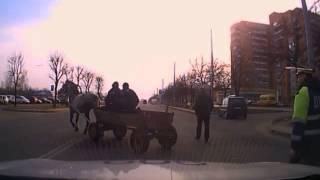 Конь, инспекторы, погоня. 02 04 2015  2