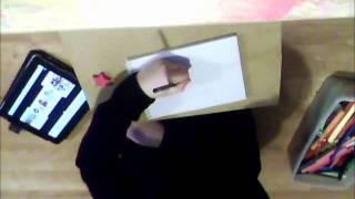 Drawing Furi