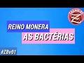 REINO MONERA - AS BACTÉRIAS (CÉLULA PROCARIOTA)
