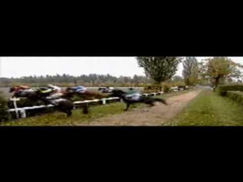 Rony Marton - Kudaku Lari