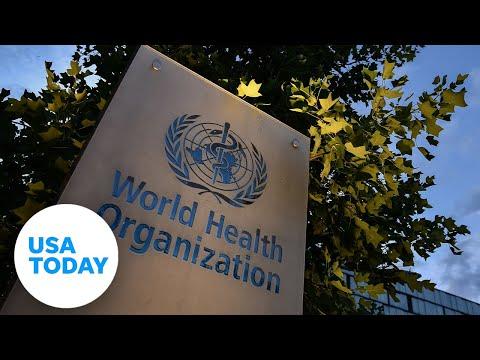 World Health Organization-China study on the origins of COVID-19 (LIVE) | USA TODAY