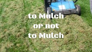 To Mulch or not to Mulch. Should you bag your clippings? Should you use the mower mulching setting?