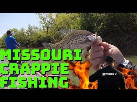 Fishing For GIANT Crappie | Smithville Lake Missouri Crappie Fishing Catch, Cook, Clean
