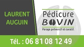 LAURENT AUGUIN PEDICURE BOVIN