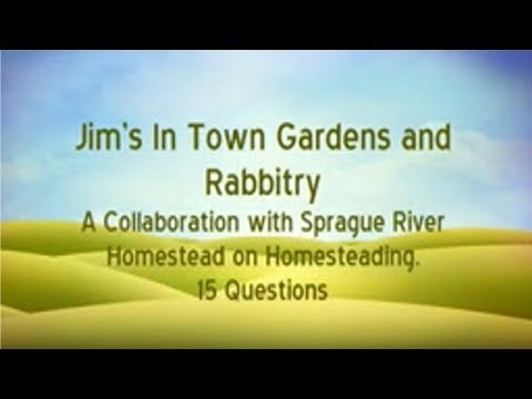 15 Questions with Jim's In Town Gardens