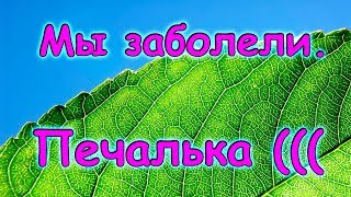 Мы заболели. Что делаем при ОРВИ. (12.17г.) Семья Бровченко.