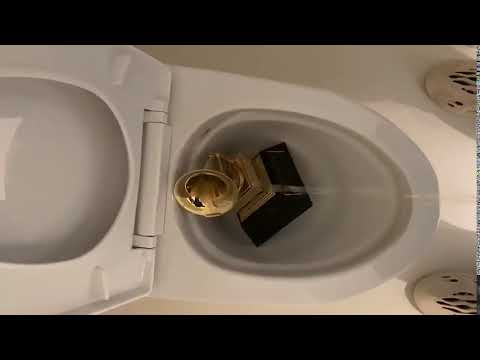 Kanye West peeing on his Grammy