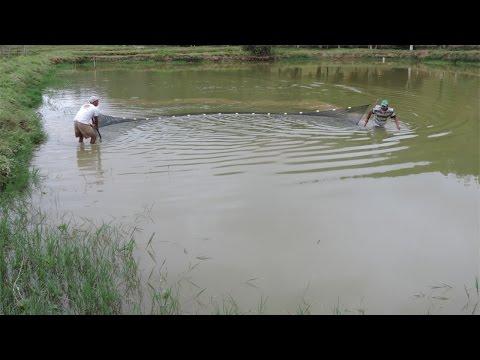 Recuperação e Conservação de Nascentes - Reservatórios