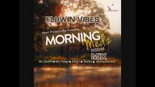 FLOWIN VIBES  - MORNING MEDZ RIDDIM MIX