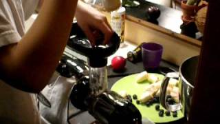 Making All Fruit Sorbet With Omega 8006 Juicer