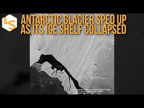 Antarctic Glacier Sped Up As Its Ice Shelf Collapsed