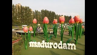 Madurodam ♥ Things To Do In The Hague  ♥ The miniature city Netherlands