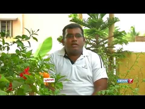 How to make Organic Fertilizer (Manure) for Terrace Gardening? | Poovali | News7 Tamil